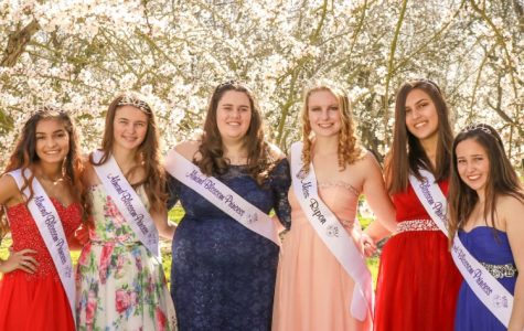 The Miss Ripon Experience
