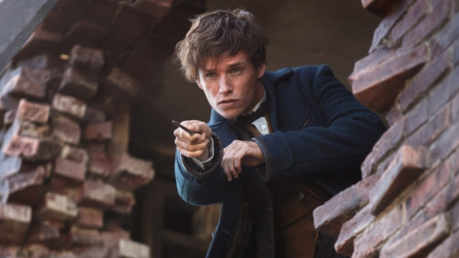 Eddie+Redmayne+as+Newt+Scamander