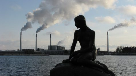 Cleaner Water and Air as Humans Stay Away