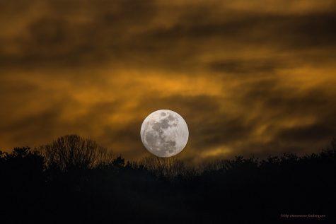 2020 Flower Moon