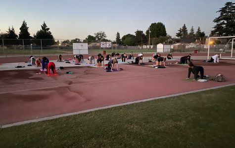 Volleyball team does yoga together during sunrise.