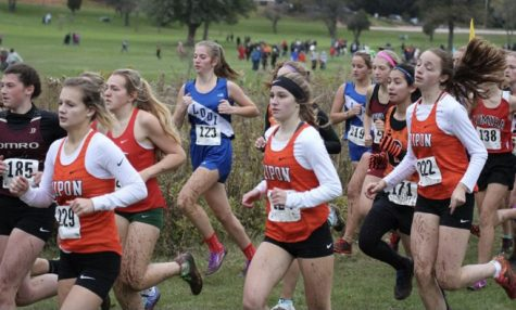 XC: How Is This Season Different?